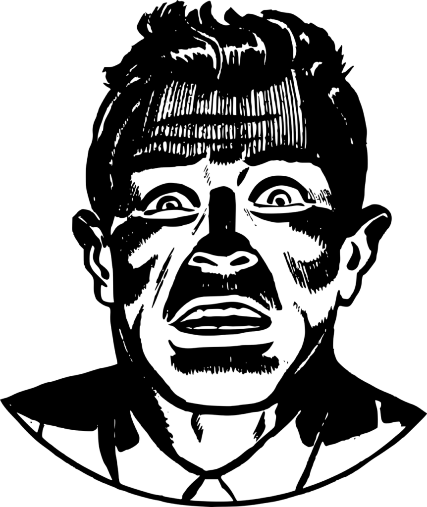 פאניקה